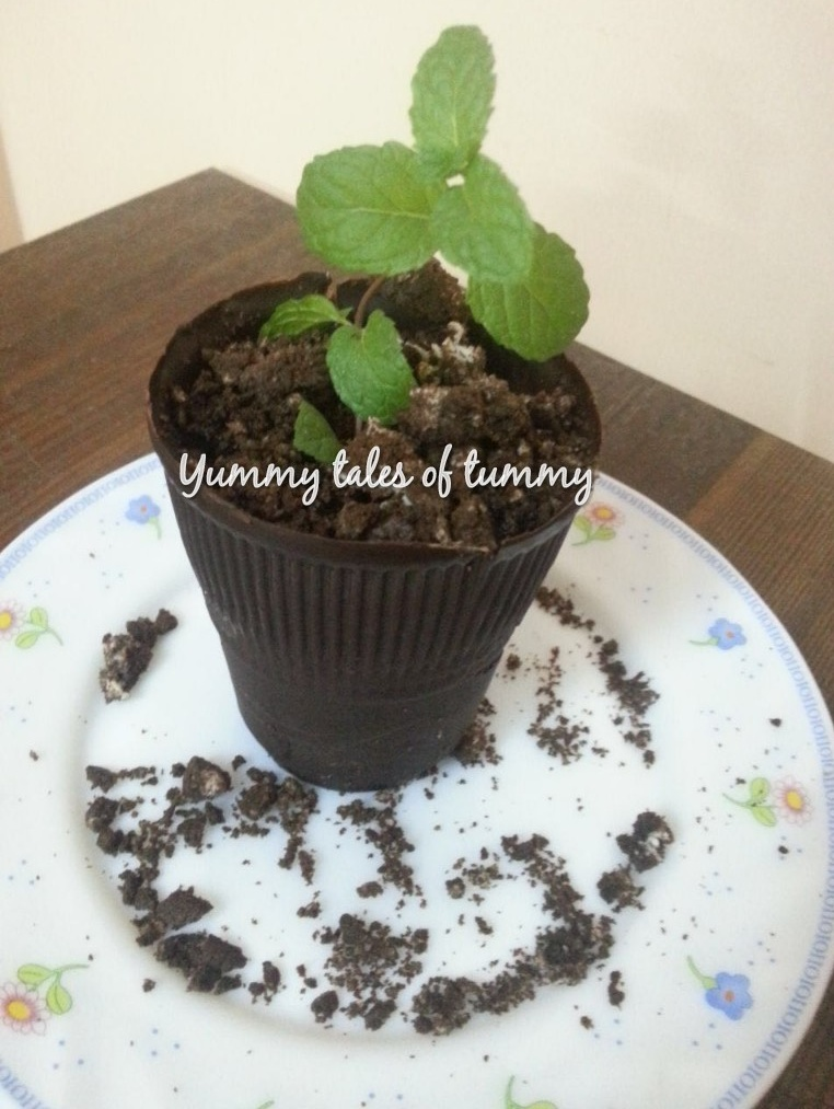 Yummy Tales Of Tummy : chocolate flower pots - startupinsights.org