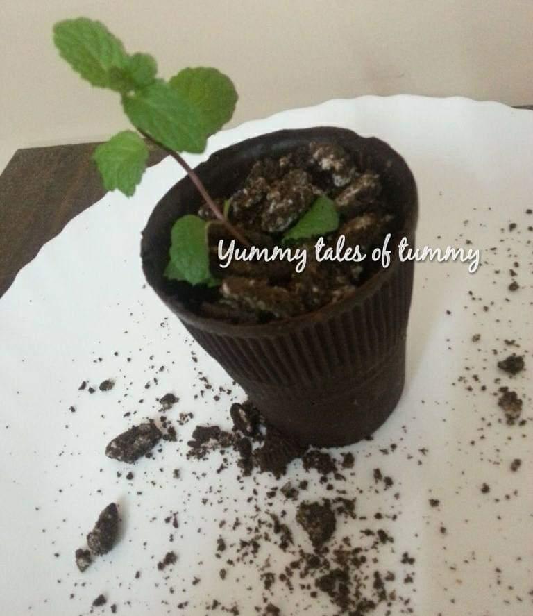 Yummy Tales Of Tummy & Brownie Rabdi edible Chocolate Flower Pot