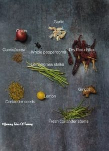 Ingredients for How to make Vegan Thai Red Curry Paste